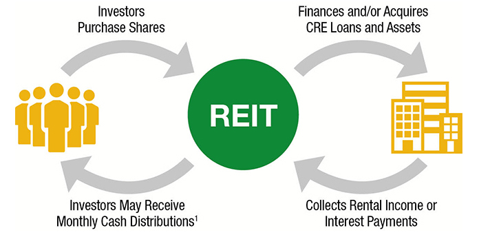 Buying Rental Property Vs Investing In A Reit